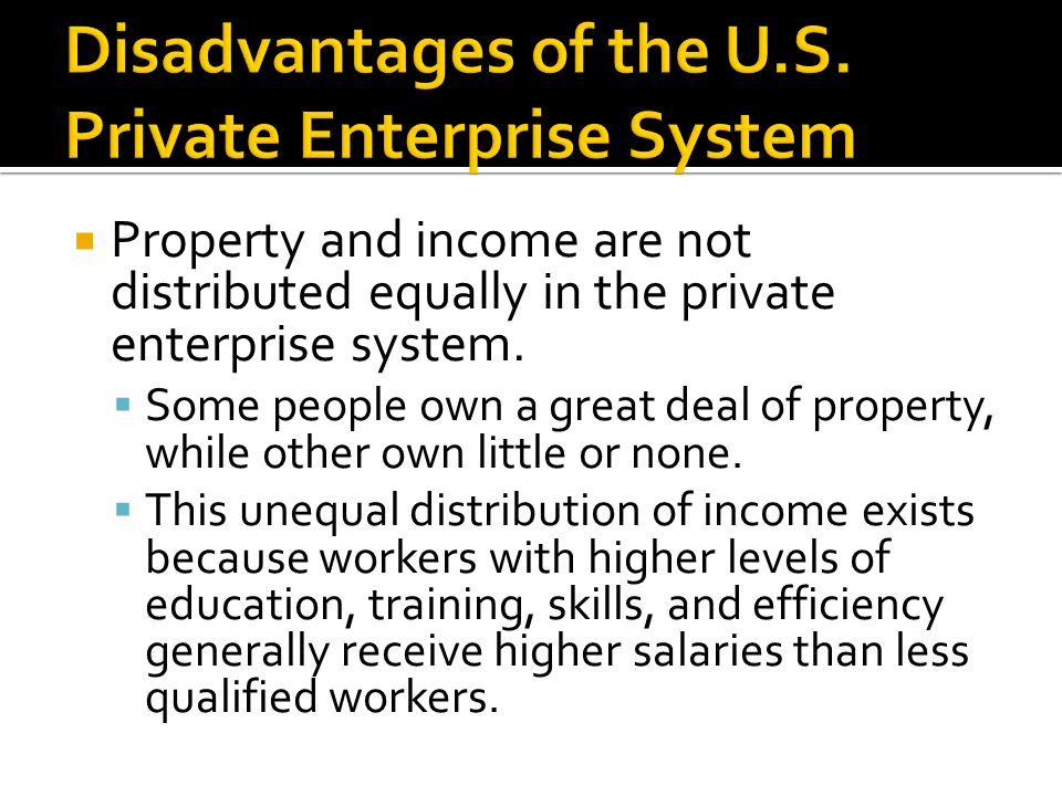 Disadvantages of the U.S. Private Enterprise System