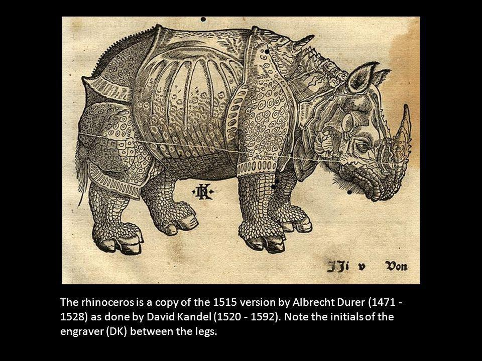 The rhinoceros is a copy of the 1515 version by Albrecht Durer (1471 - 1528) as done by David Kandel (1520 - 1592).