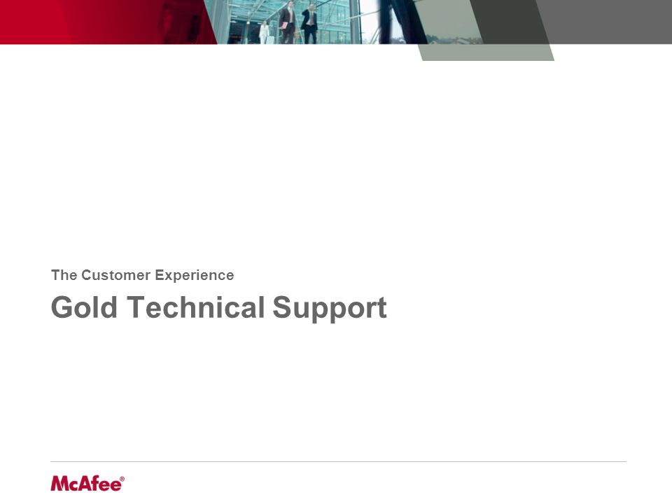 Gold Technical Support