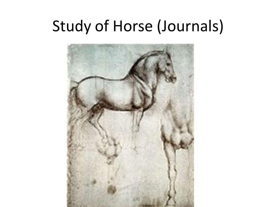 Study of Horse (Journals)