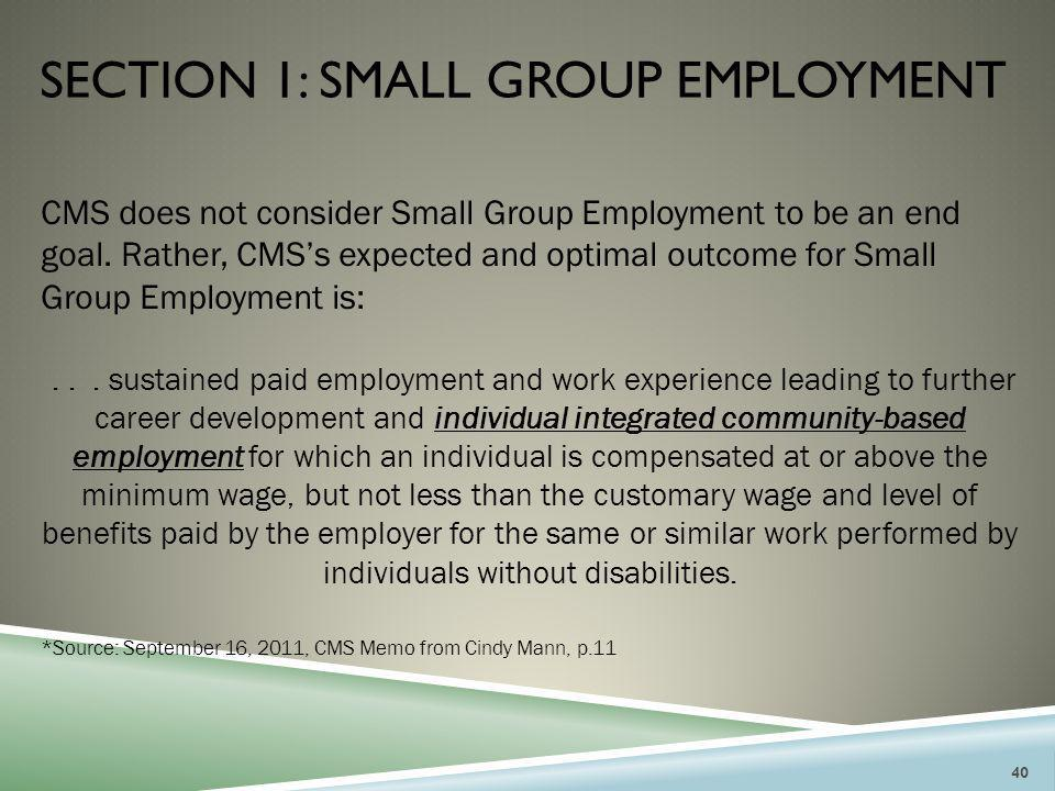 Section 1: small group employment