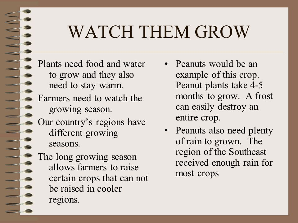 WATCH THEM GROW Plants need food and water to grow and they also need to stay warm. Farmers need to watch the growing season.