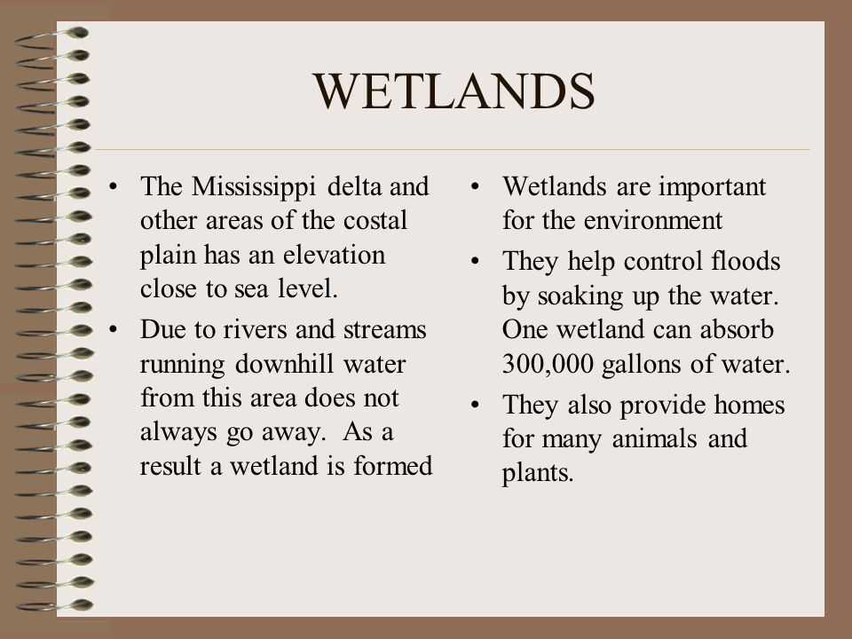 WETLANDS The Mississippi delta and other areas of the costal plain has an elevation close to sea level.
