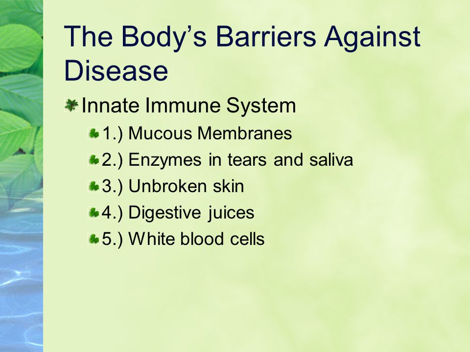The Body's Barriers Against Disease