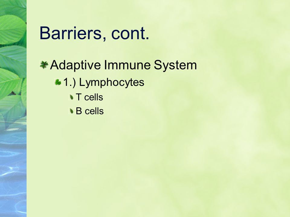 Barriers, cont. Adaptive Immune System 1.) Lymphocytes T cells B cells