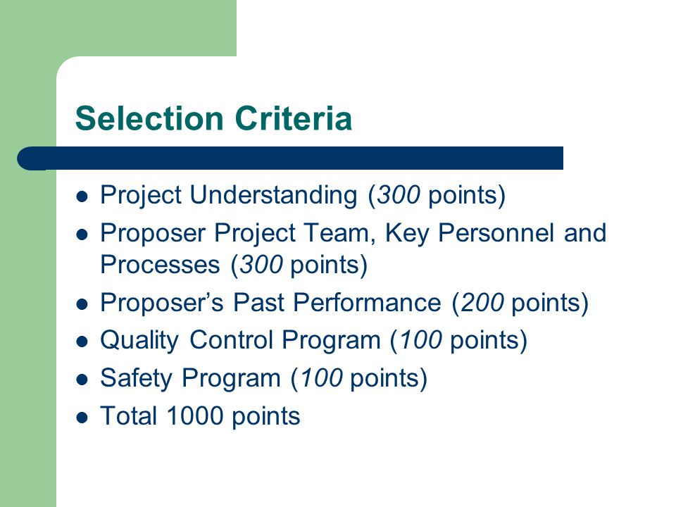 Selection Criteria Project Understanding (300 points)