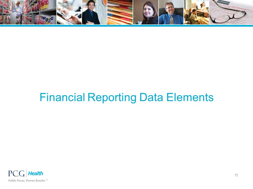 Financial Reporting Data Elements