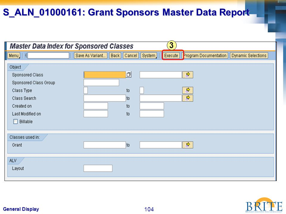 S_ALN_01000161: Grant Sponsors Master Data Report