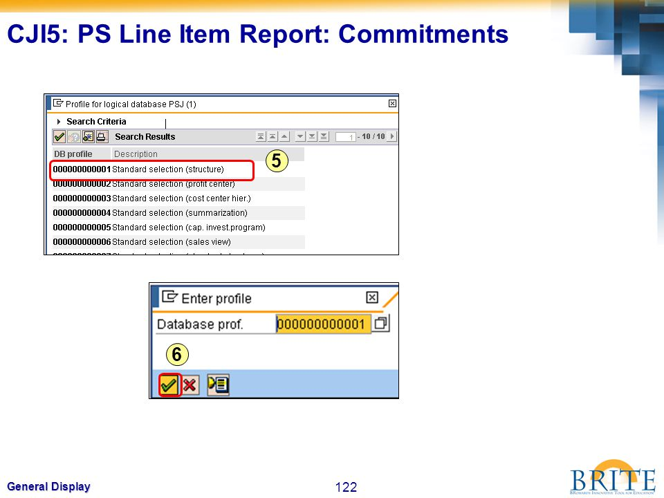 CJI5: PS Line Item Report: Commitments