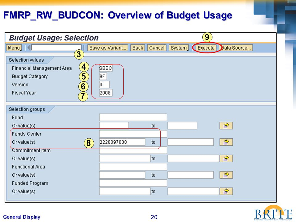 FMRP_RW_BUDCON: Overview of Budget Usage