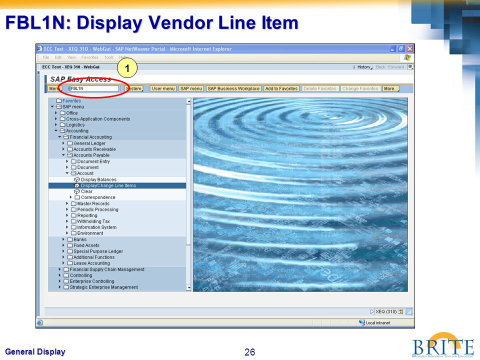 FBL1N: Display Vendor Line Item