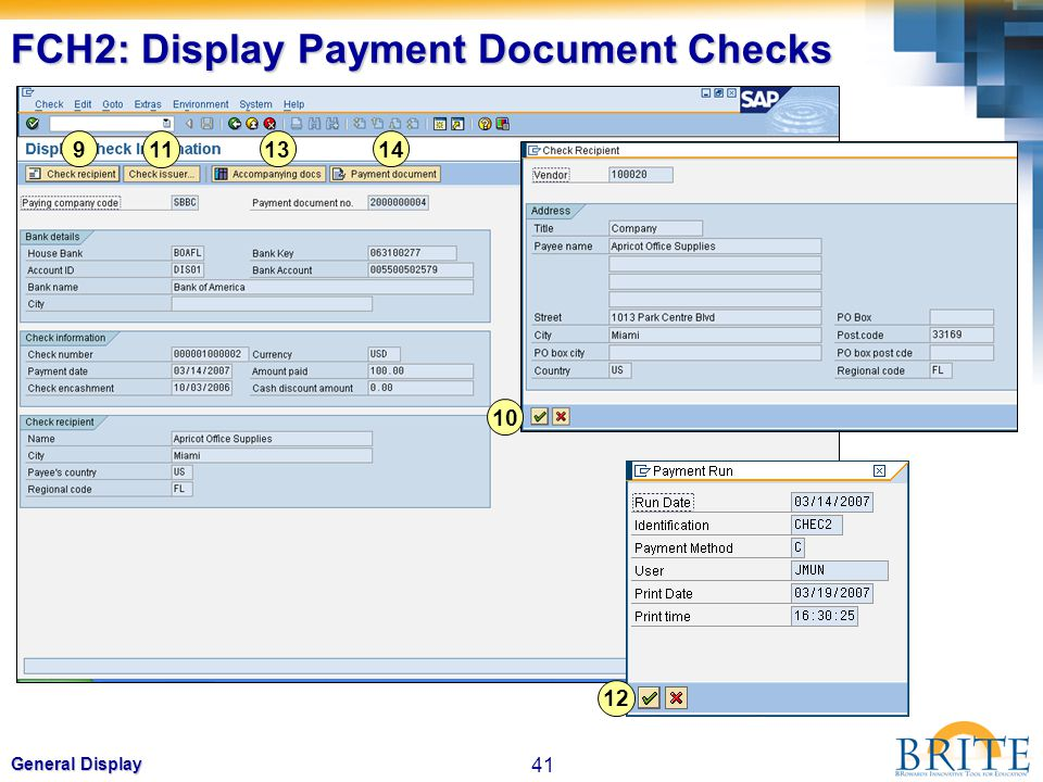 FCH2: Display Payment Document Checks