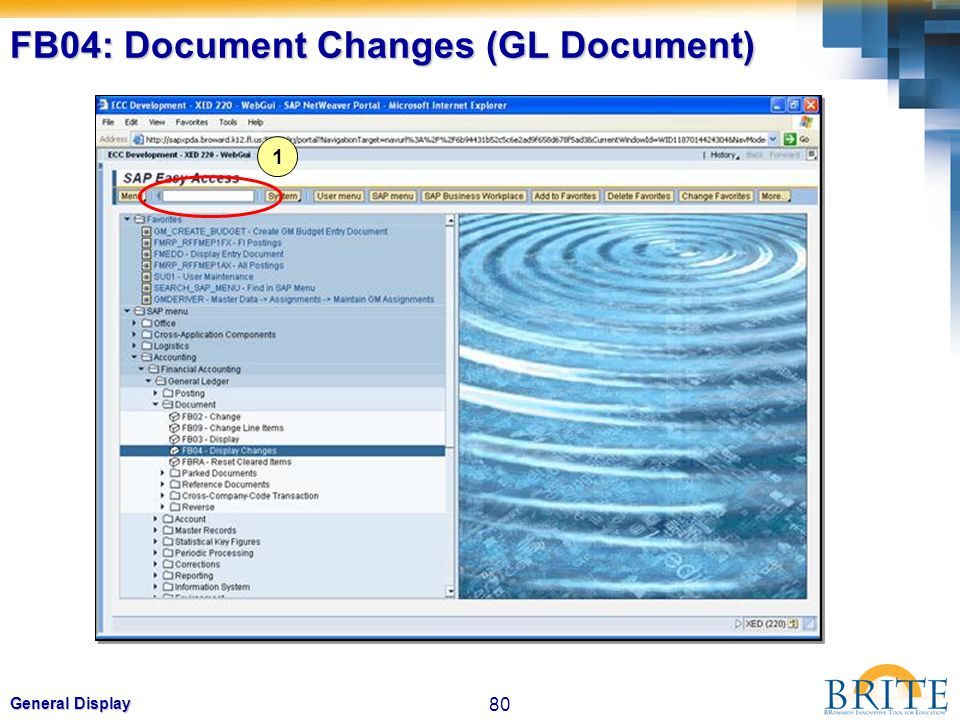 FB04: Document Changes (GL Document)