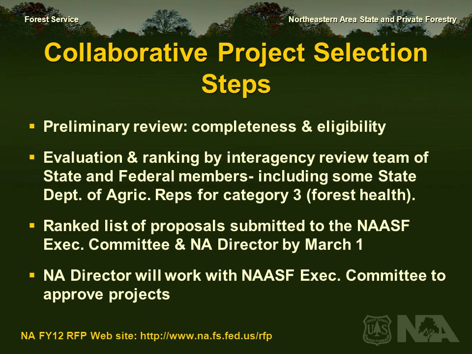Collaborative Project Selection Steps