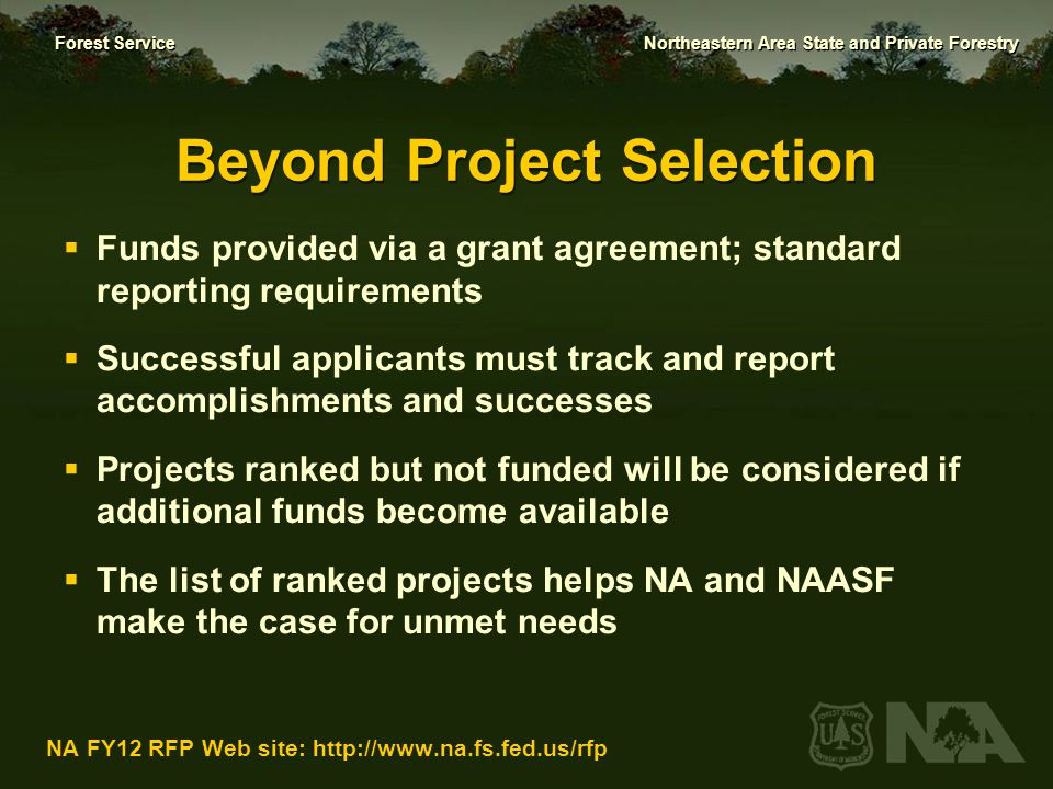 Beyond Project Selection