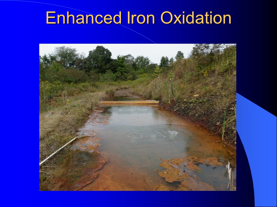 Enhanced Iron Oxidation