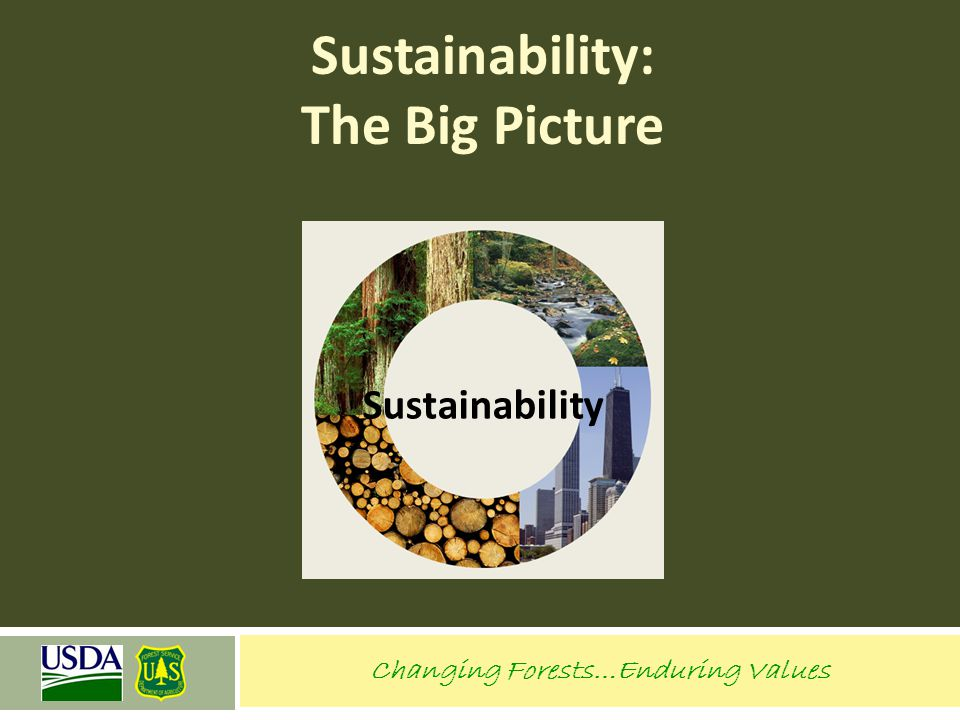 Sustainability: The Big Picture