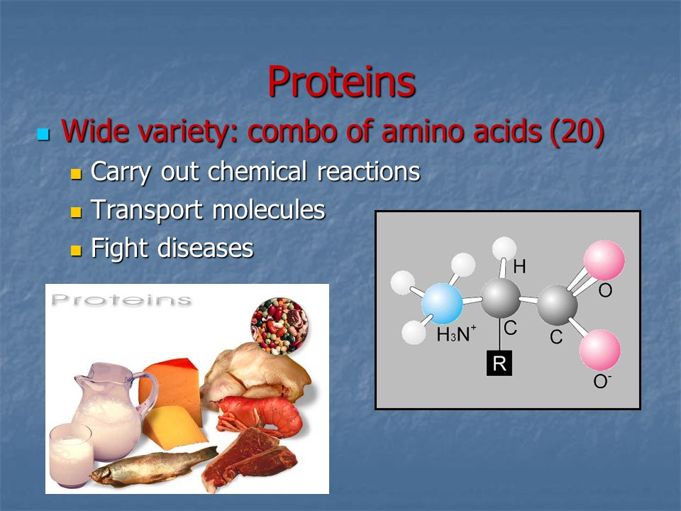 Proteins Wide variety: combo of amino acids (20)