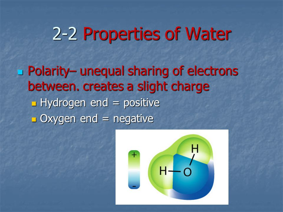 2-2 Properties of Water Polarity– unequal sharing of electrons between. creates a slight charge. Hydrogen end = positive.