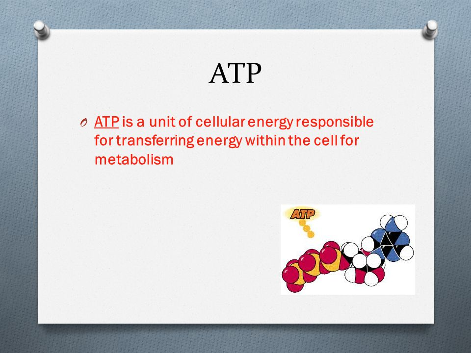 ATP ATP is a unit of cellular energy responsible for transferring energy within the cell for metabolism.