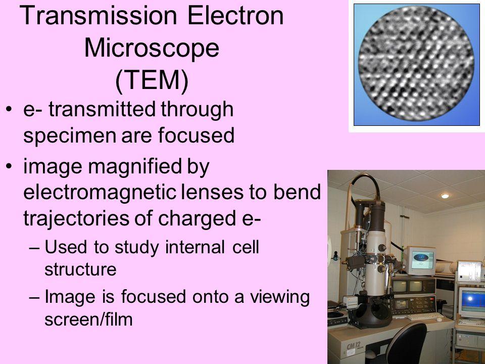 Transmission Electron Microscope (TEM)