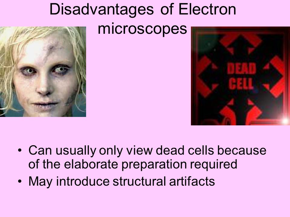 Disadvantages of Electron microscopes