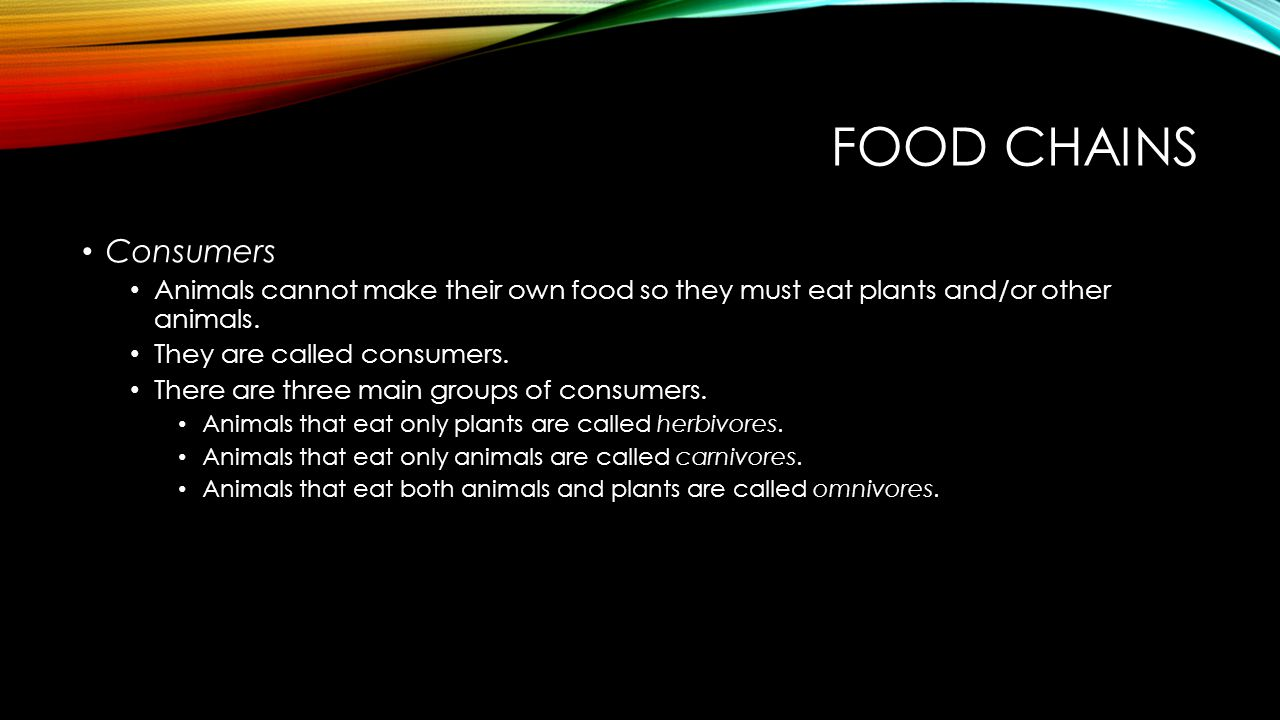 Food Chains Consumers. Animals cannot make their own food so they must eat plants and/or other animals.