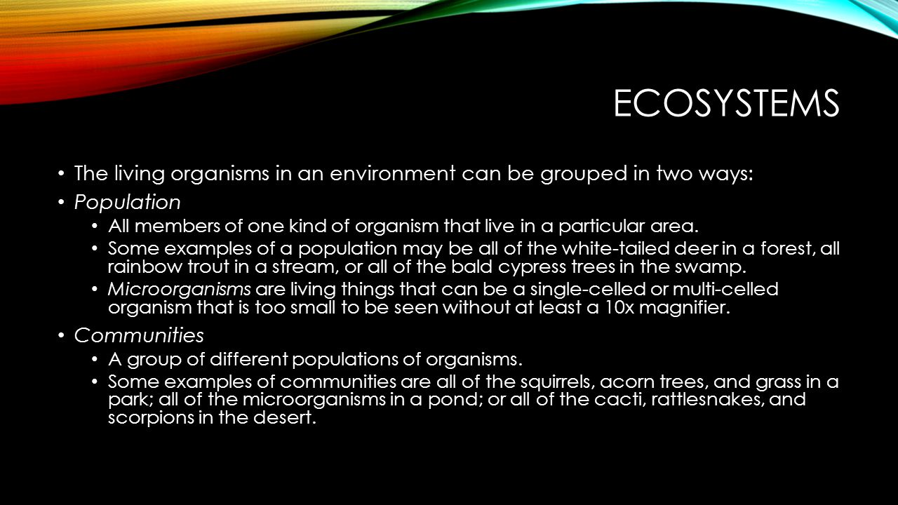 Ecosystems The living organisms in an environment can be grouped in two ways: Population.
