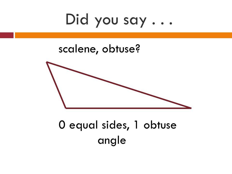 Did you say . . . scalene, obtuse 0 equal sides, 1 obtuse angle