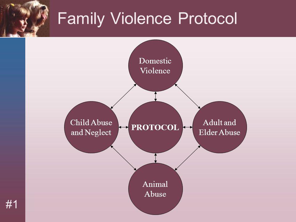 Family Violence Protocol