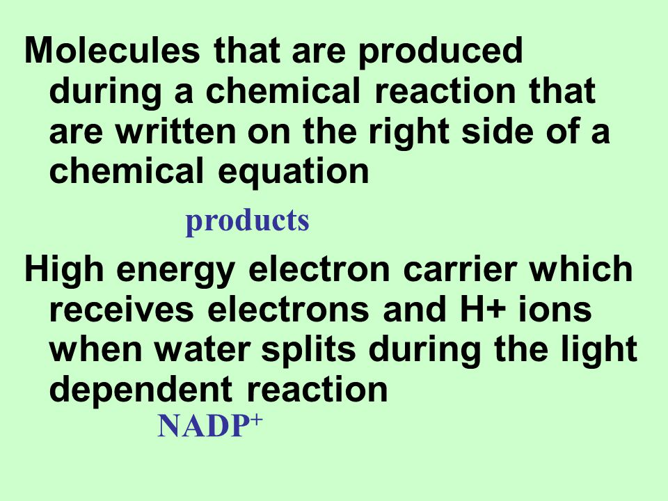 Molecules that are produced during a chemical reaction that are written on the right side of a chemical equation