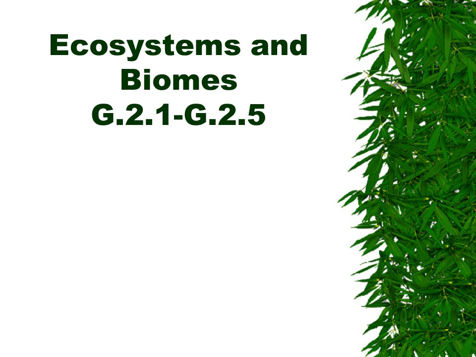 Ecosystems and Biomes G.2.1-G.2.5