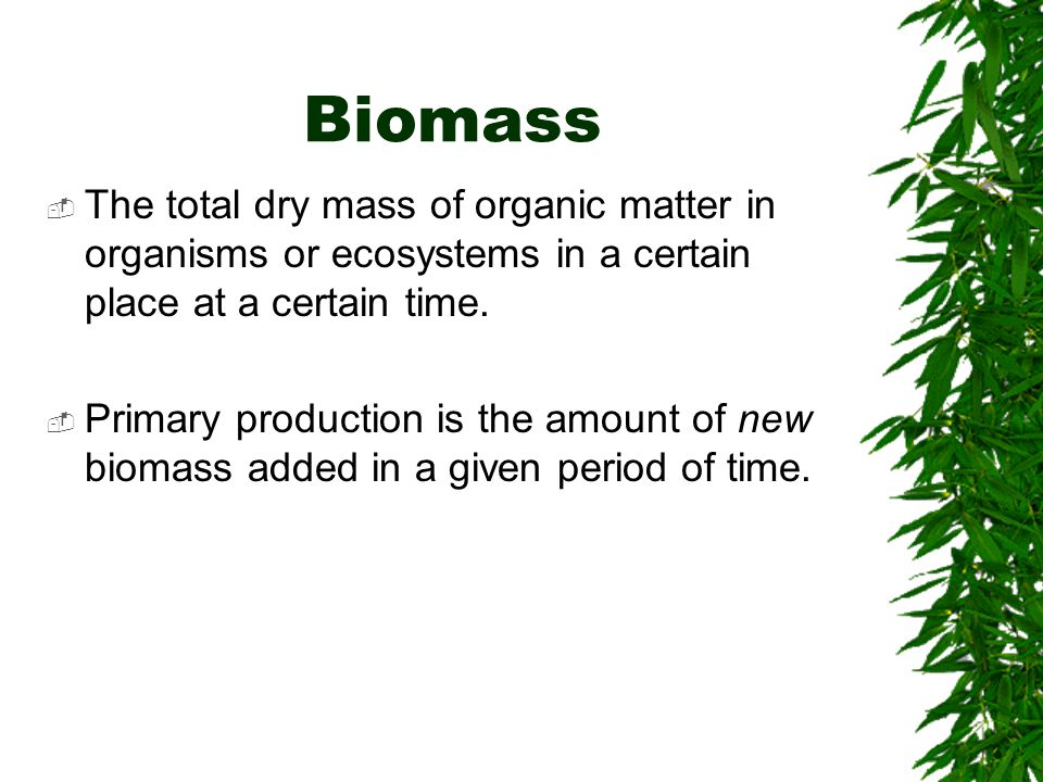 Biomass The total dry mass of organic matter in organisms or ecosystems in a certain place at a certain time.