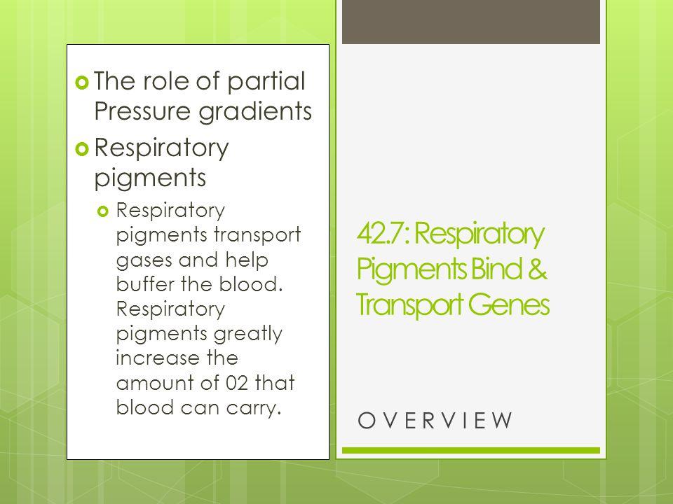 42.7: Respiratory Pigments Bind & Transport Genes