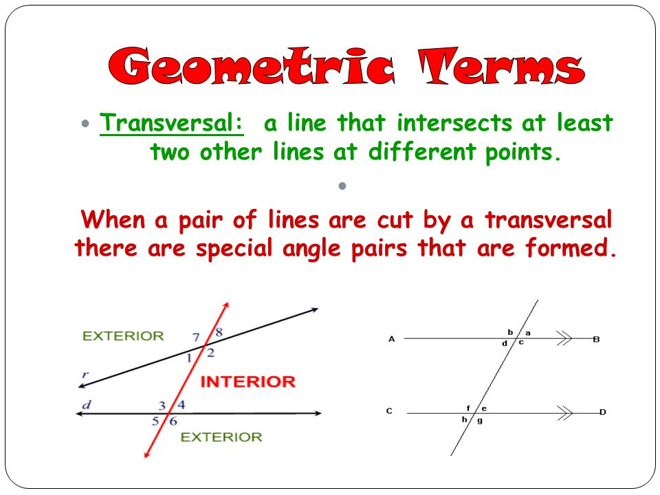 Geometric Terms Transversal: a line that intersects at least two other lines at different points.