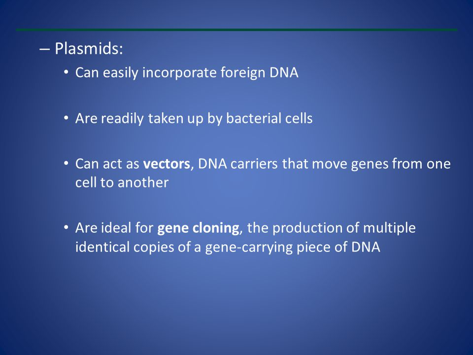 Plasmids: Can easily incorporate foreign DNA