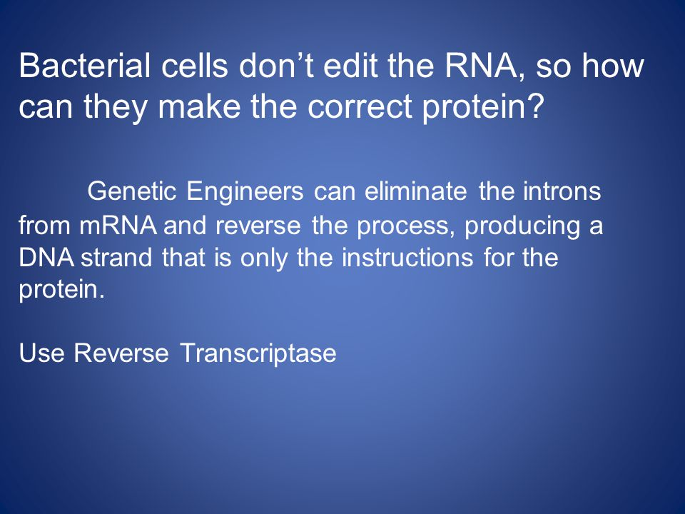 Bacterial cells don't edit the RNA, so how can they make the correct protein