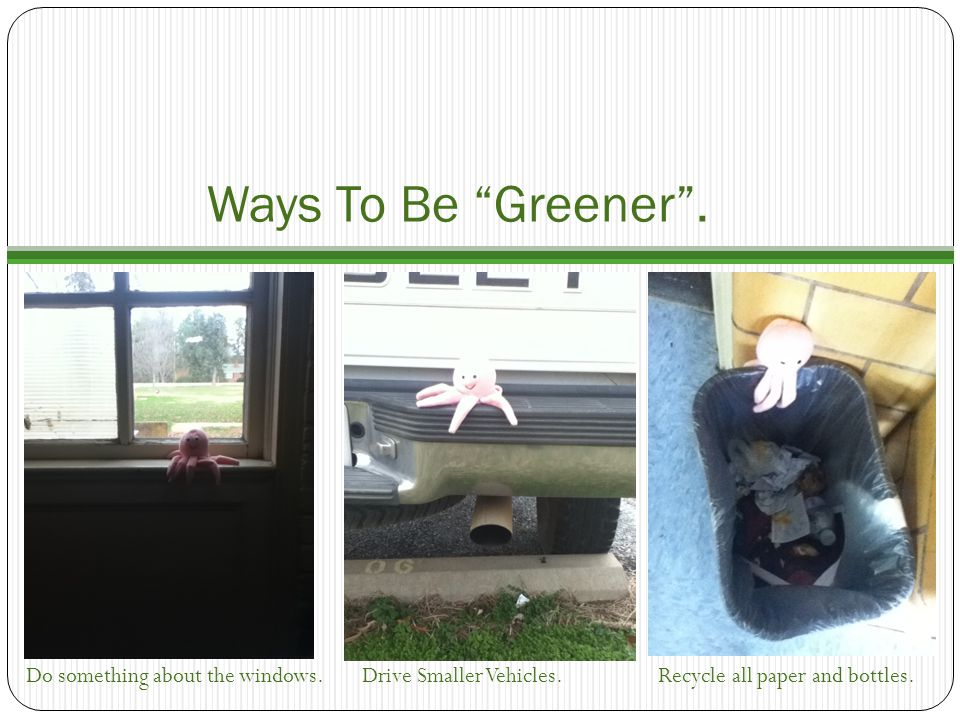 Ways To Be Greener . Do something about the windows.