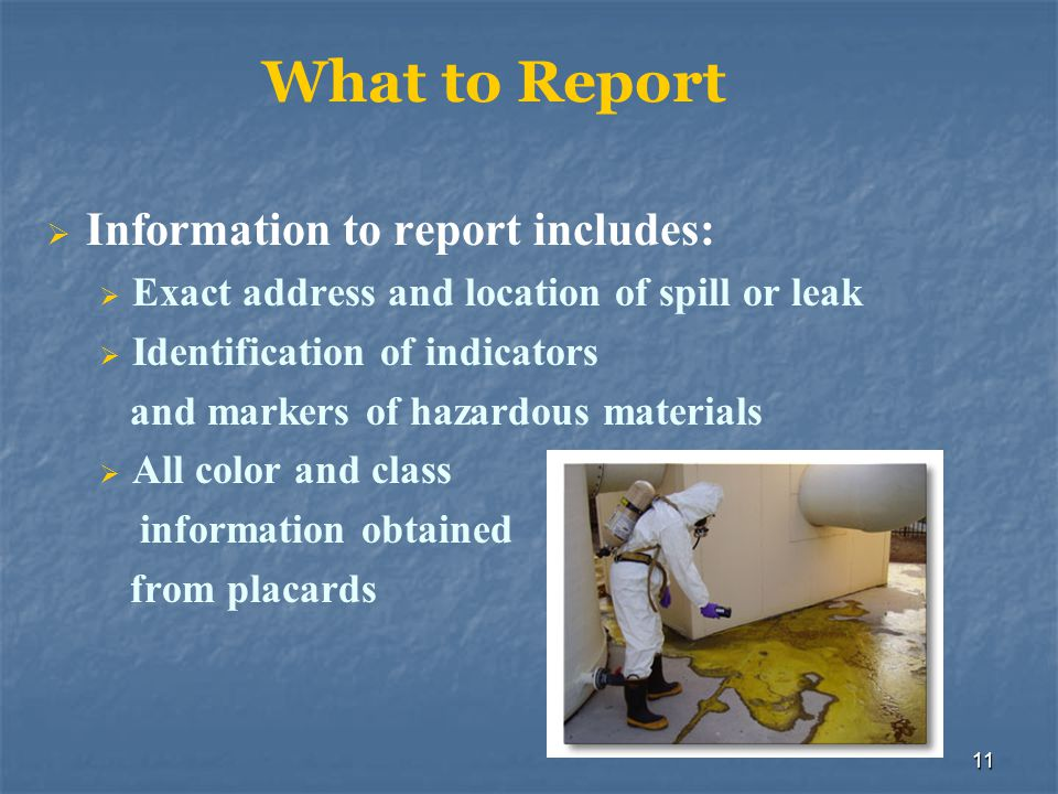 What to Report Information to report includes: