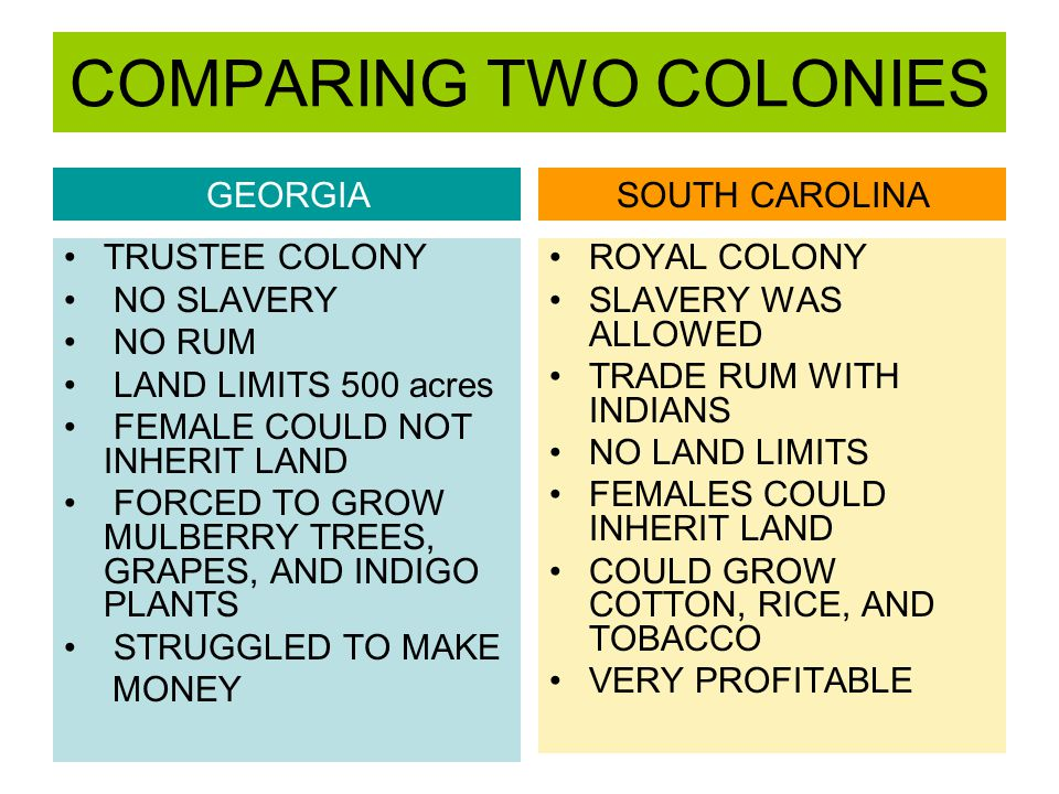 COMPARING TWO COLONIES