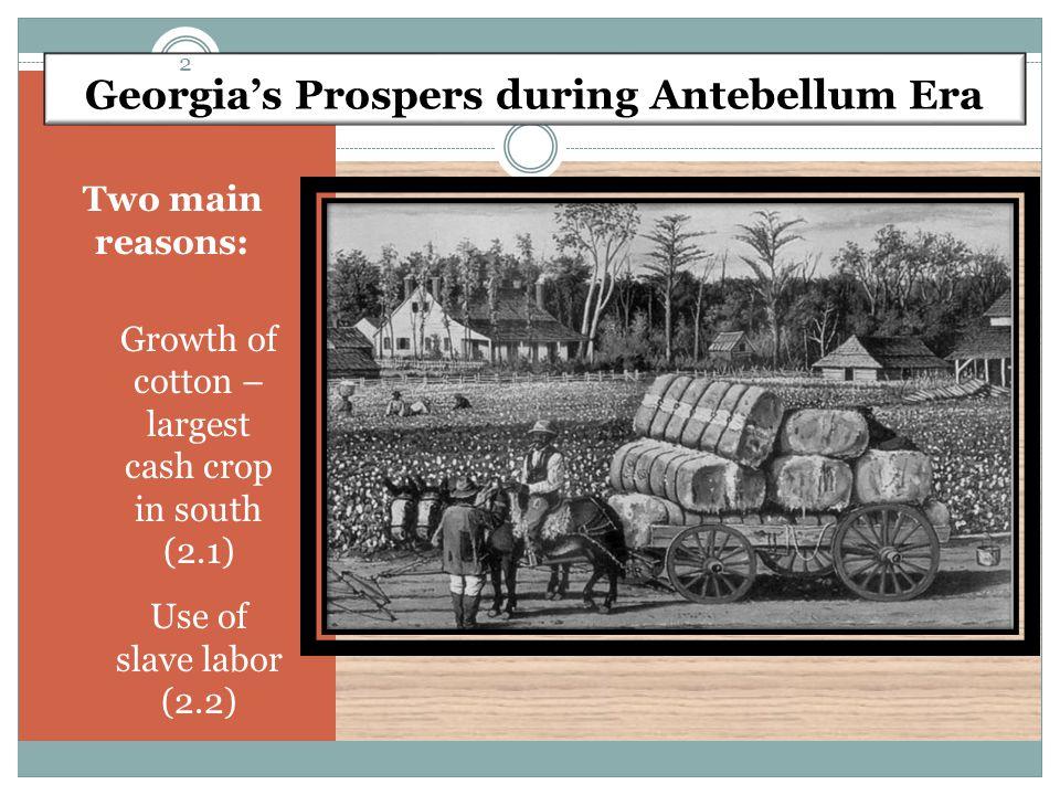 Georgia's Prospers during Antebellum Era