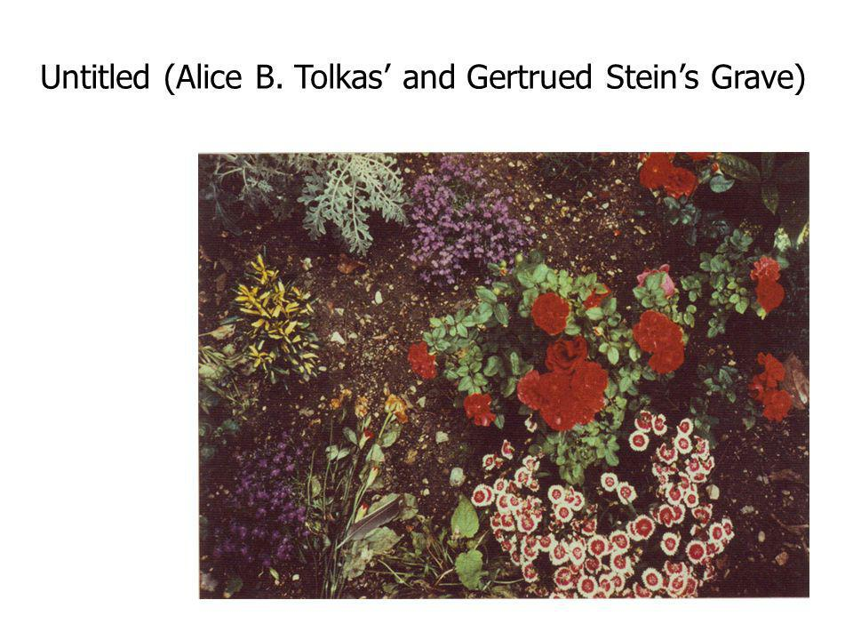 Untitled (Alice B. Tolkas' and Gertrued Stein's Grave)