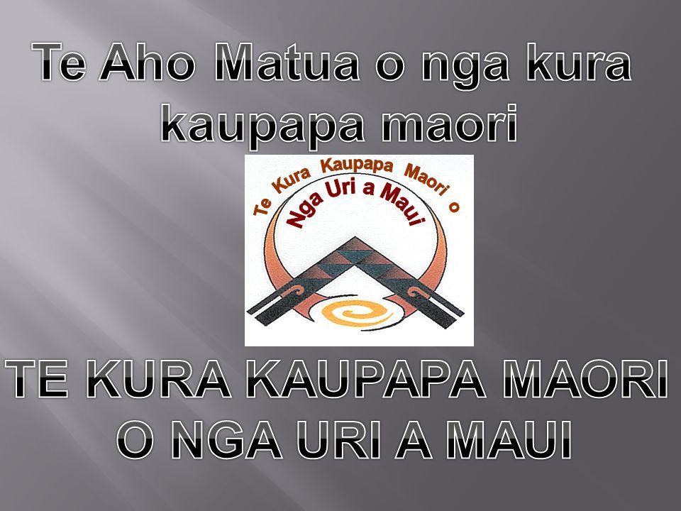 Te Aho Matua o nga kura kaupapa maori TE KURA KAUPAPA MAORI