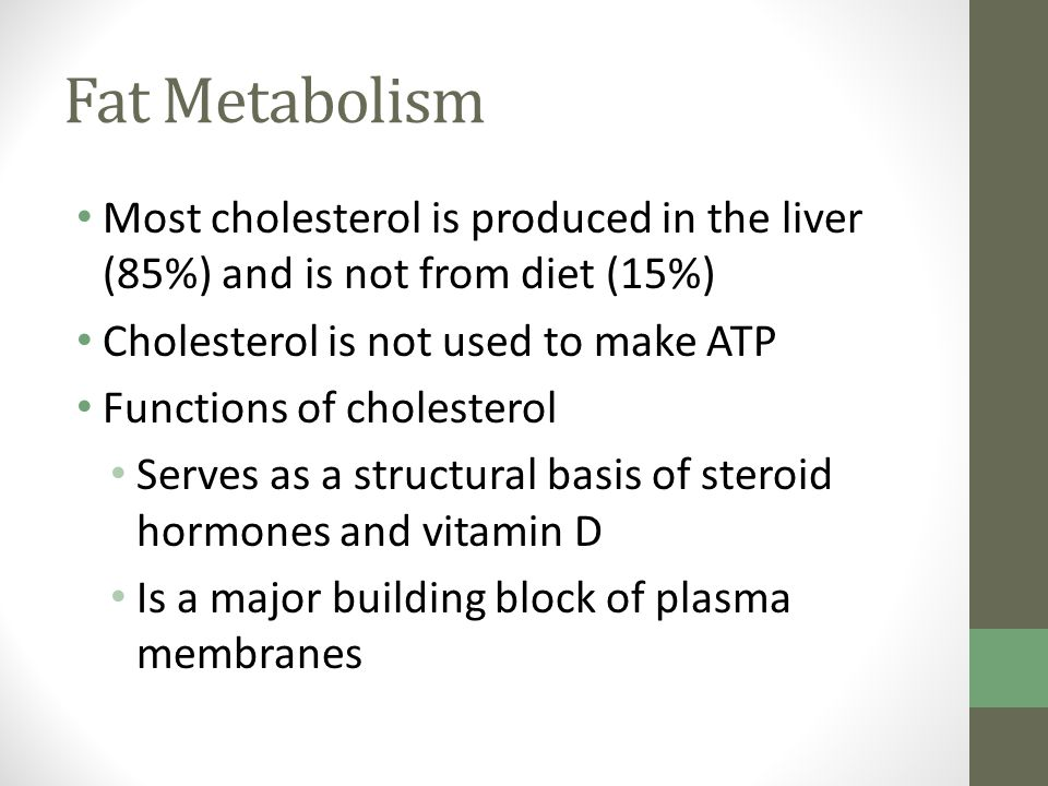 Fat Metabolism Most cholesterol is produced in the liver (85%) and is not from diet (15%) Cholesterol is not used to make ATP.