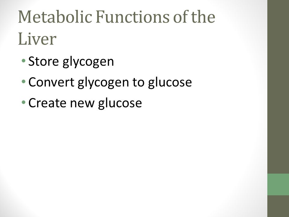 Metabolic Functions of the Liver