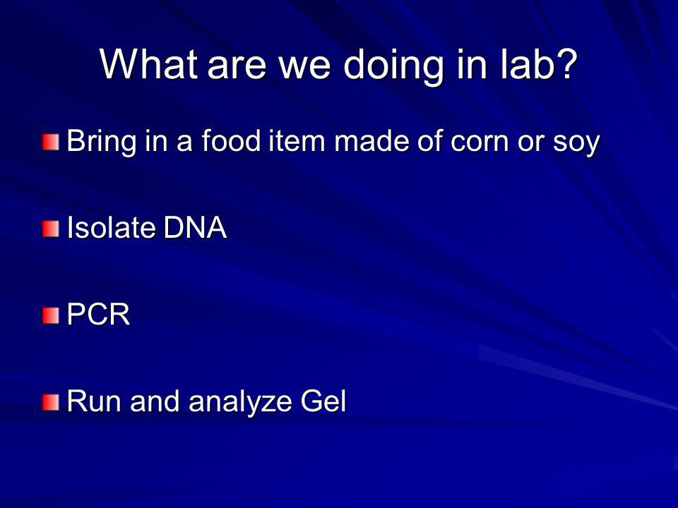 What are we doing in lab Bring in a food item made of corn or soy