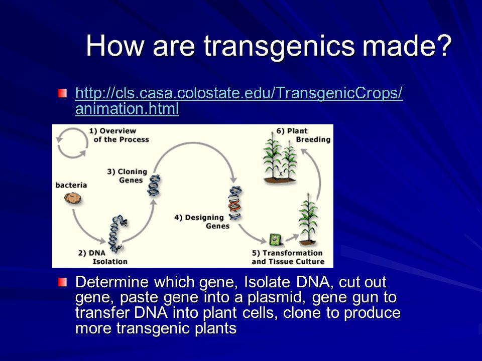 How are transgenics made