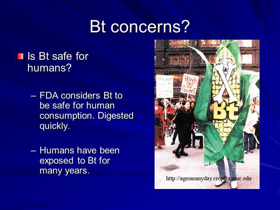 Bt concerns Is Bt safe for humans