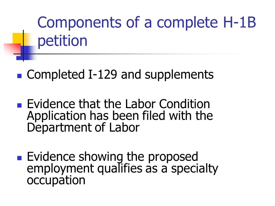 Components of a complete H-1B petition