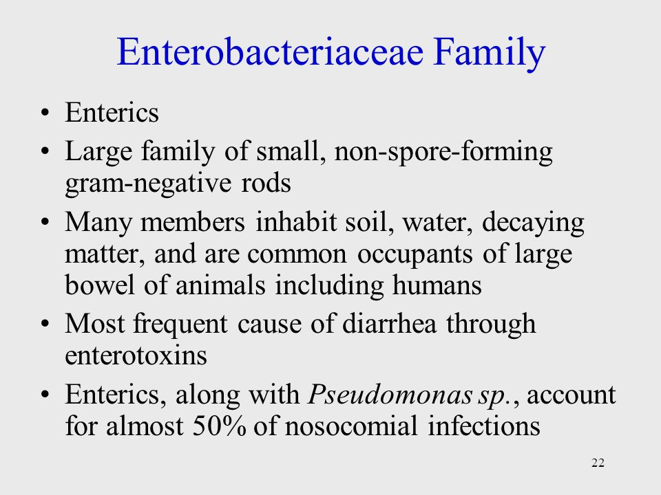 Enterobacteriaceae Family
